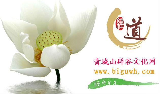 青城山辟谷文化网